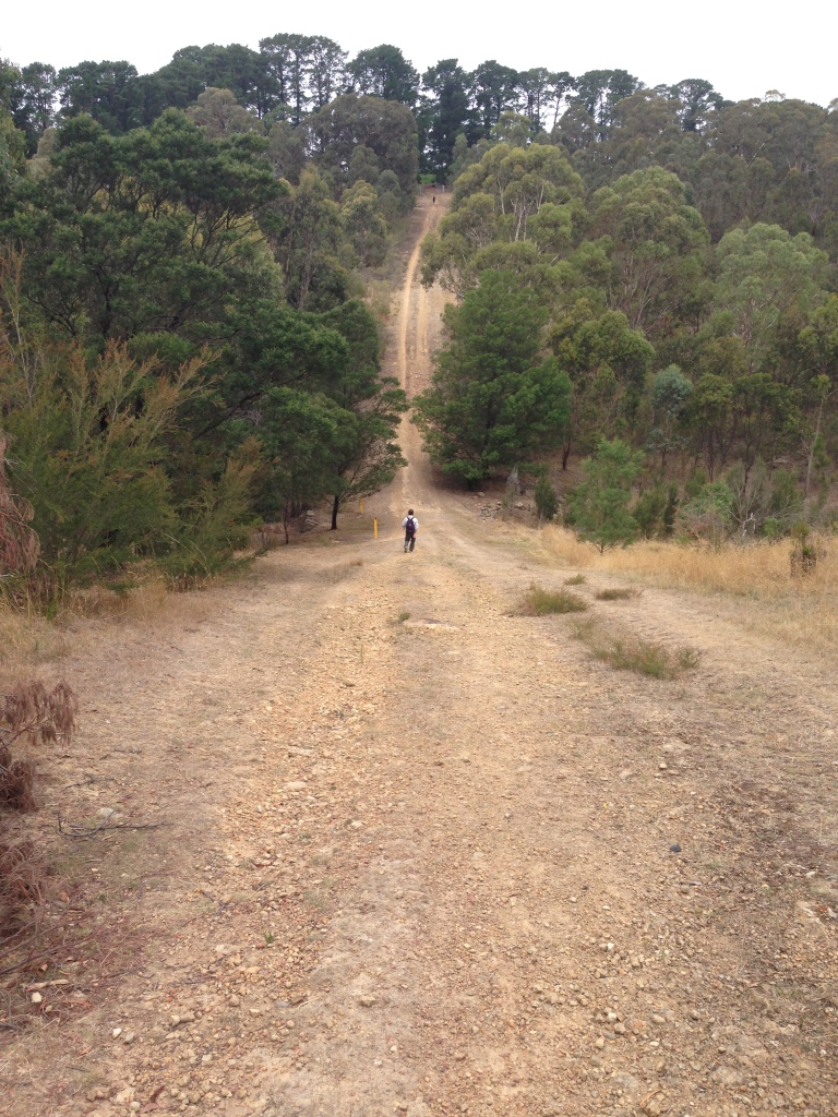 Perfect for Everest Base Camp Hill training