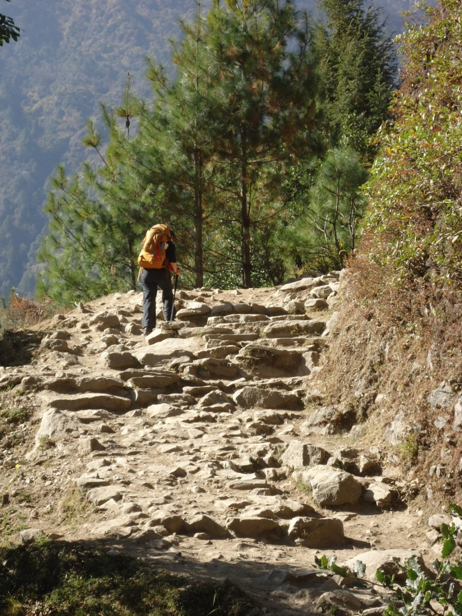 Train For Hills and Steps on the EBC Trek