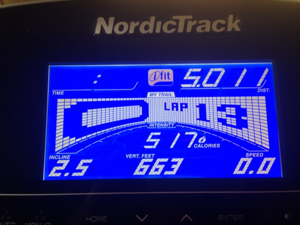 Boot Camp Day 9 Treadmill - To run off the hot cross buns.
