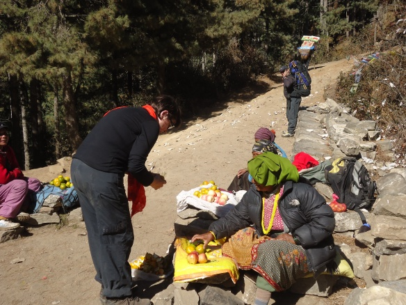 Fruit sellers on the Everest Base Camp trail on the climb to Namche Bazaar.