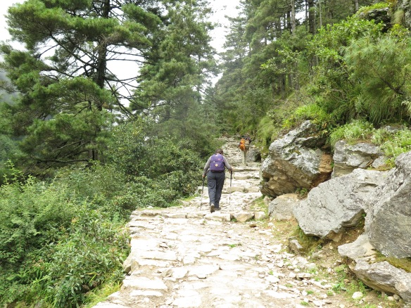 Climb to Namche Bazaar, main trail to Everest Base Camp
