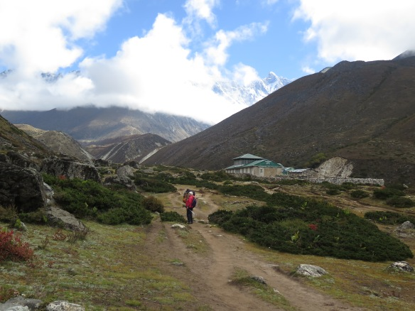 EBC Trek Towards Dingboche