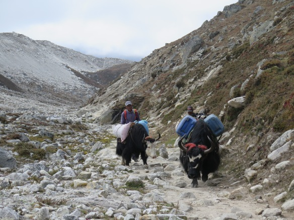 EBC Trek To Gorak Shep